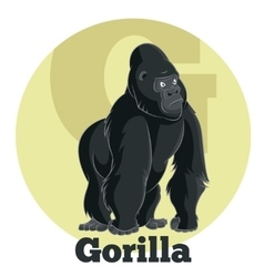 Abc cartoon gorilla vector
