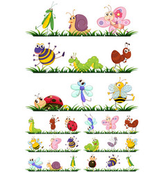 Different types of insects on grass vector