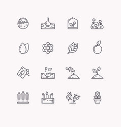 Line icons for gardening vector