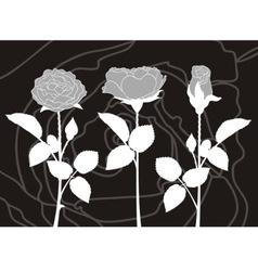 roses silhouettes vector image vector image