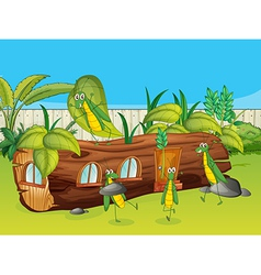 Grasshoppers and a wooden house vector