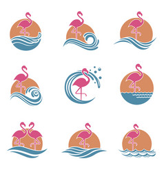 Flamingo emblems set vector