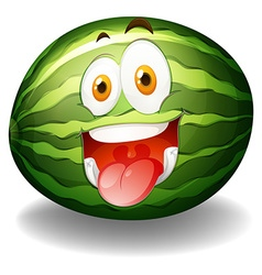 Happy facial expression on watermelon vector
