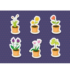 Plant stickers vector image