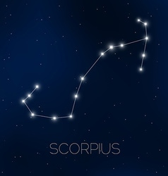 Scorpius constellation vector