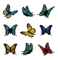 Butterfly of colorful icon set vector image vector image