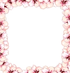 Frame restangle blossoming sakura or cherry red vector