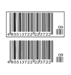 Two barcodes vector image vector image