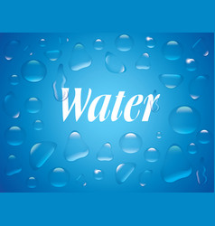 Clear transparent water drops isolated on the blue vector