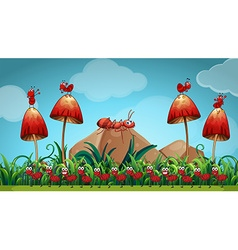 Ants in the mushroom garden vector