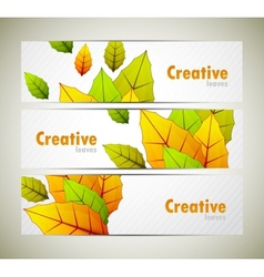 Set of banners with leaves vector
