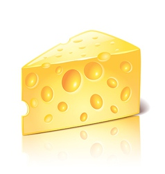 Object cheese vector