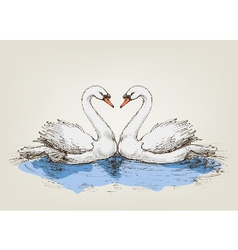 Two swans on lake love symbol vector