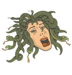 head of medusa vector image vector image