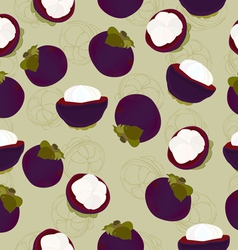 Mangosteen fruit seamless vector