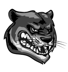 Panther mascot team label design vector