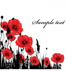 poppy card vector image vector image
