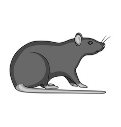 Rodent rat single icon in monochrome style for vector