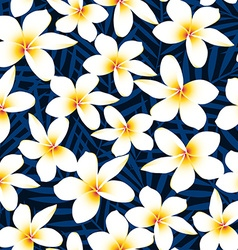 Tropical white frangipani plumeria flower seamless vector