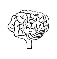 Brain mind mental outline vector