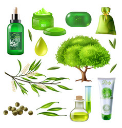 Products of tea tree set vector