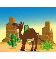 Camel in desert vector