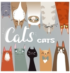 Funny cartoon cats collection vector image
