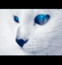 mystic cat vector image