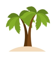 palm tropical plant vector image