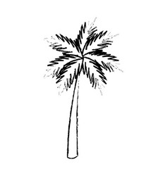 Palm tropical tree beach plant image vector