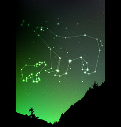 ursa minor and major on nigt sky with forest vector image vector image