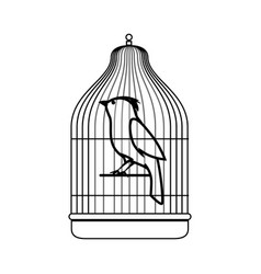 cute bird in cage mascot vector image