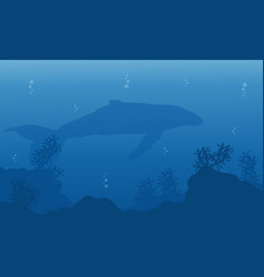 Landscape of whale on blue sea silhouettes vector