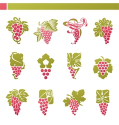 logo template - grape with green leaf vector image vector image