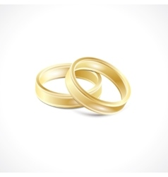 Wedding rings icon vector