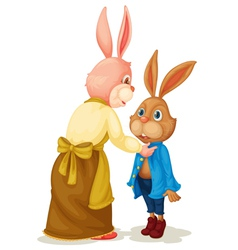 Mother and son rabbit vector