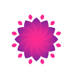 flower for logo design violet over white vector image