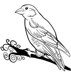 hand drawn sparrow bird animal sketch vector image vector image