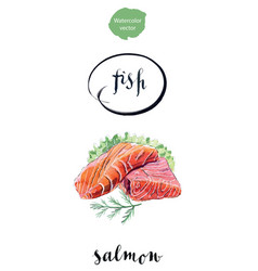 slice of salmon with salad and dill vector image