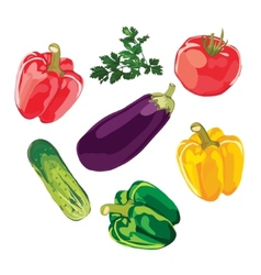 Set of vegetables on a white background vector image vector image