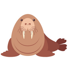 walrus with happy face vector image