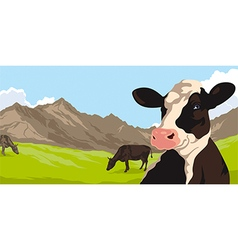 Cows with grass and mountains vector
