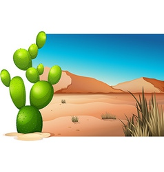 A cactus at the desert vector