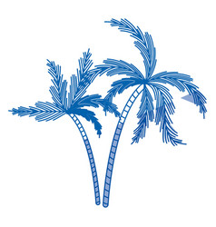 Blue shading silhouette of two palm trees vector