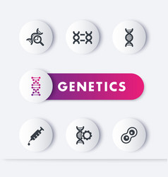 Genetics icons set genetic modification dna vector