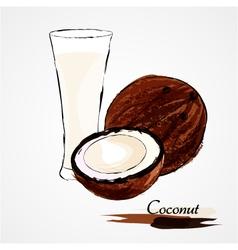 coconuts milk vector image