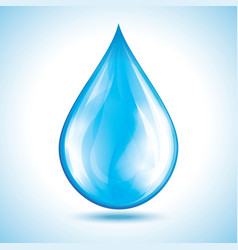 Glossy water drop isolated vector