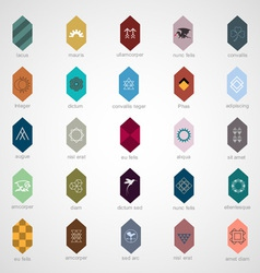 Icons and elements for design vector image vector image