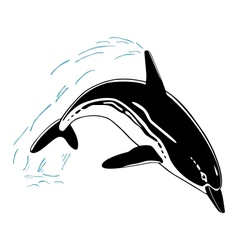 Jumping dolphin isolated on white background vector image vector image