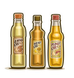 Bottles of almond walnut peanut oil vector